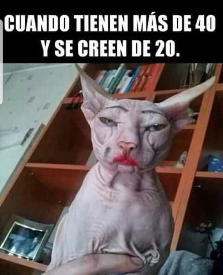 Marcianadas 392 09082019001104 (93)