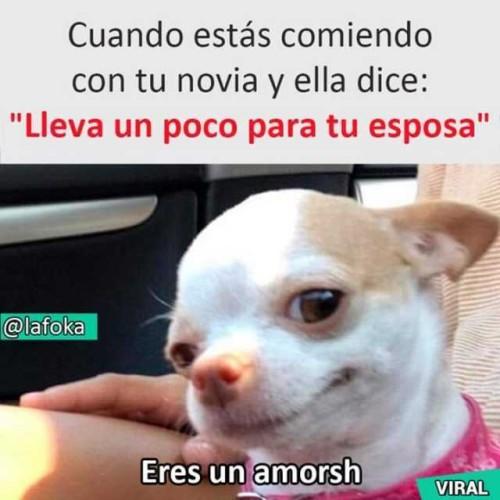 Marcianadas 393 1608201900001257 (326)