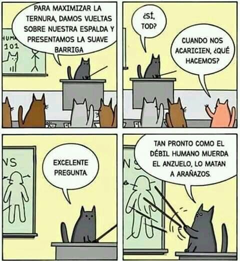 Marcianadas 394 230819001441 (47)