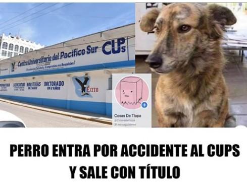 Marcianadas 395 30082019001142 (118)