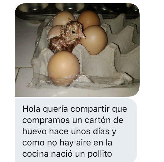 Marcianadas 395 30082019001142 (163)
