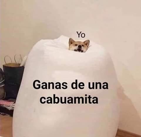 Marcianadas 395 30082019001142 (170)