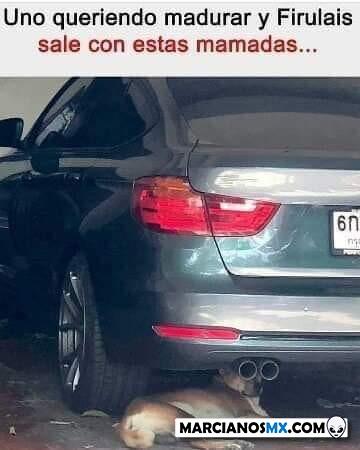 Marcianadas 395 30082019001142 (206)