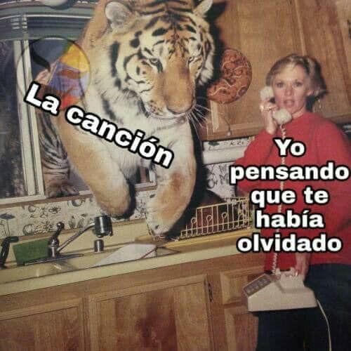 Marcianadas 395 30082019001142 (226)