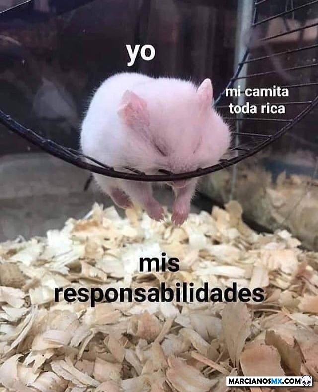 Marcianadas 395 30082019001142 (25)