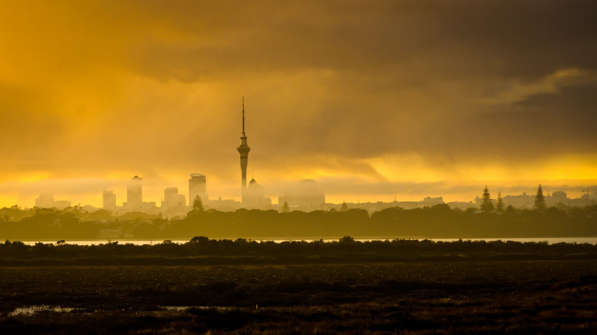 SkyTower en Auckland