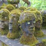 estatuas de cabezas cubiertas de plantas