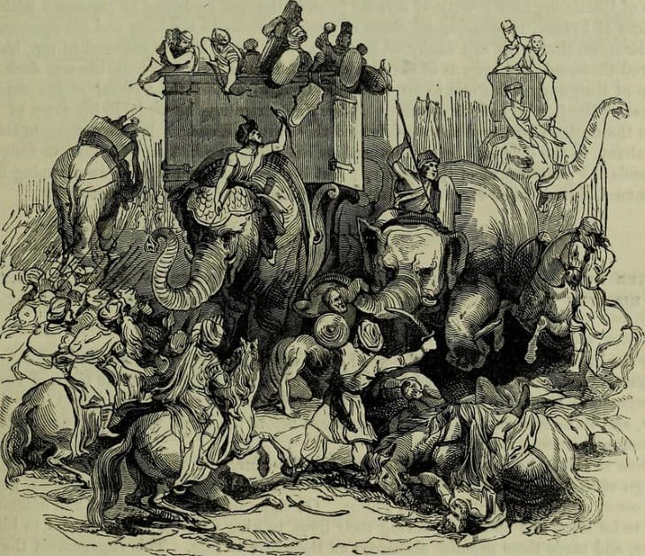 ilustracion grabado elefantes en la guerra