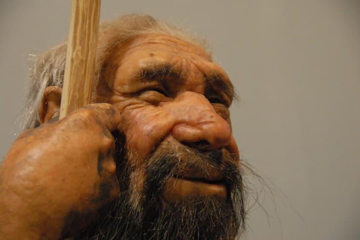 neandertal anciano