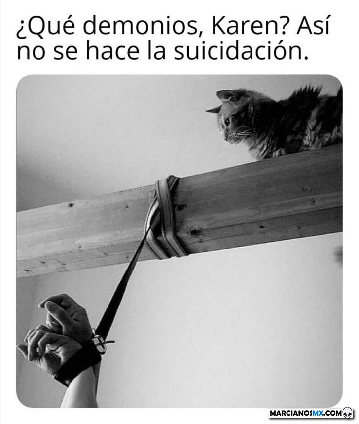 Marcianadas 396 060920191552 (165)