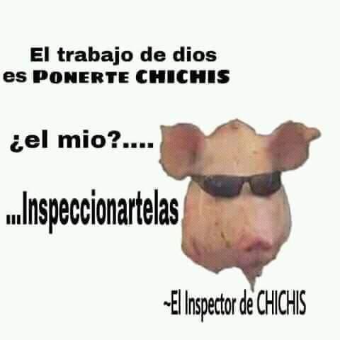 Marcianadas 396 060920191552 (301)