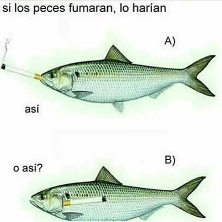 Marcianadas 397 13092019001225 (206)