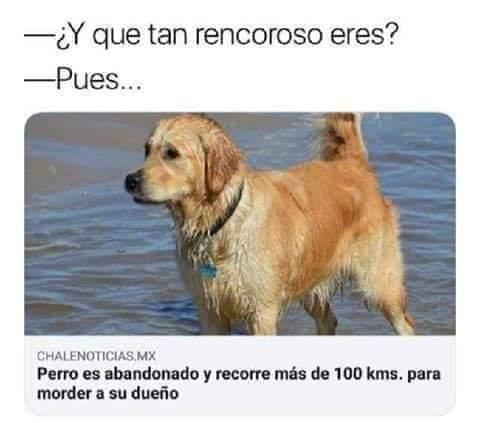 Marcianadas 397 13092019001225 (257)