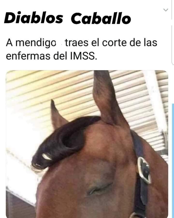 Marcianadas 397 13092019001225 (259)