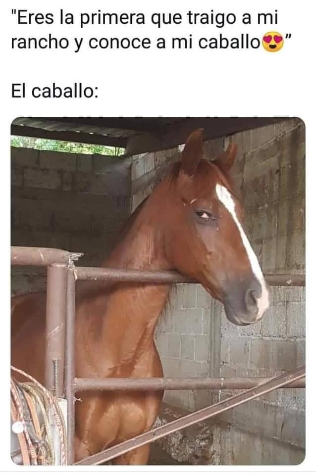 Marcianadas 397 13092019001225 (294)