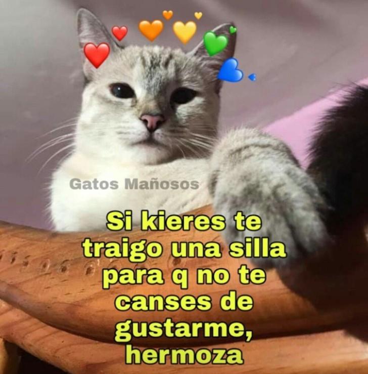 Marcianadas 397 13092019001225 (99)