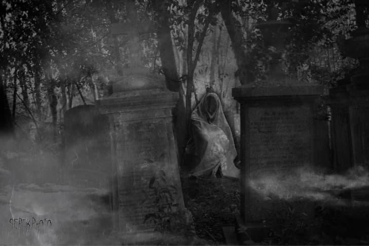 necrofago acecha en el cementerio