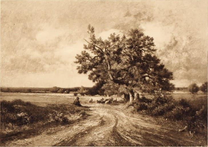 paisaje rural camino de tierra
