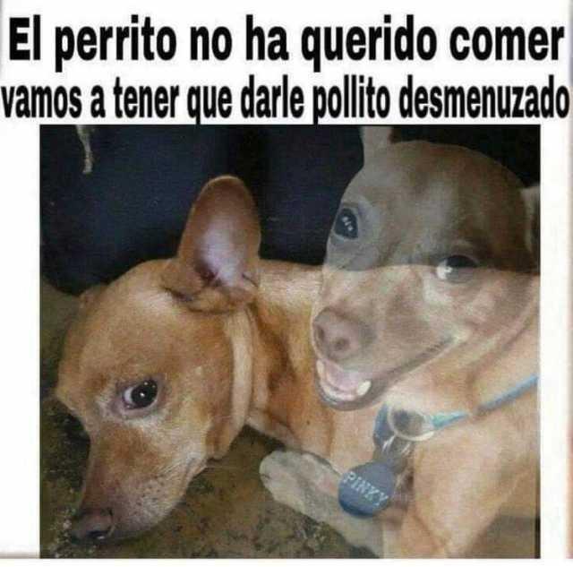 Marcianadas 400 04102019 (249)