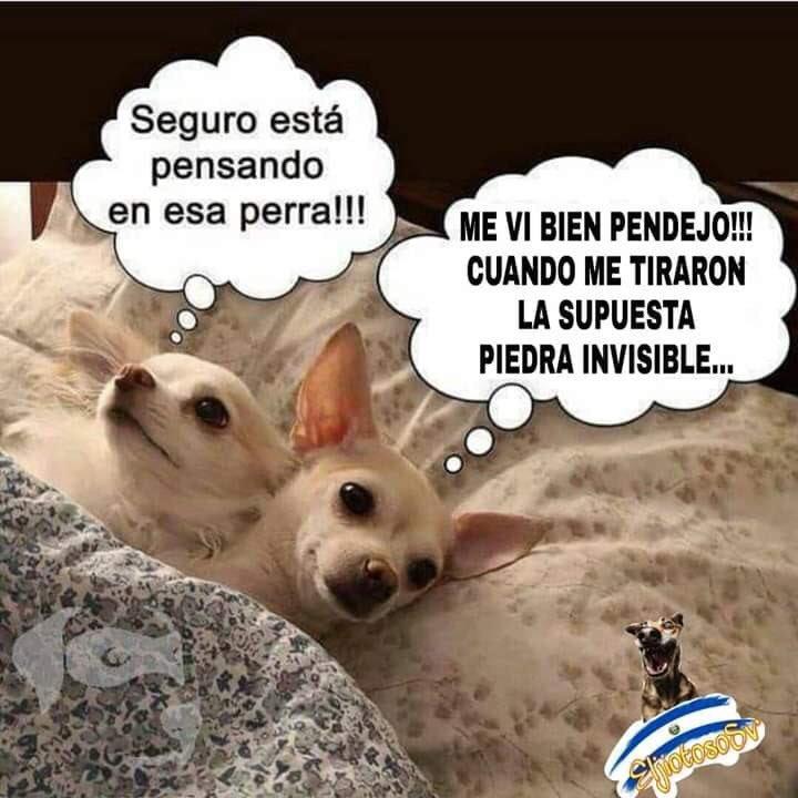 Marcianadas 400 04102019 (42)