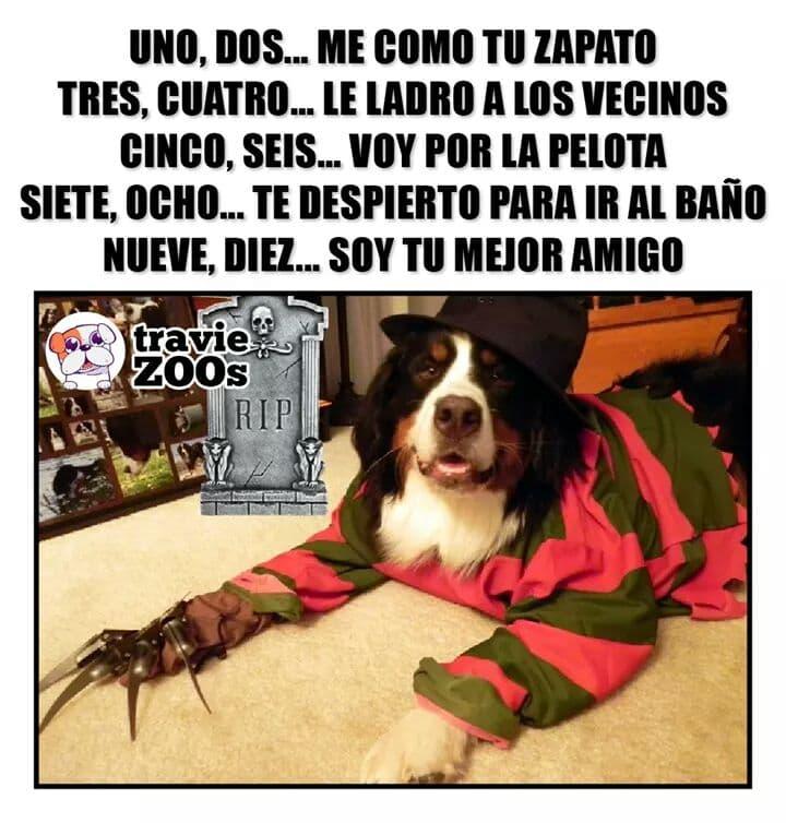 Marcianadas 401 11102019001342 (231)