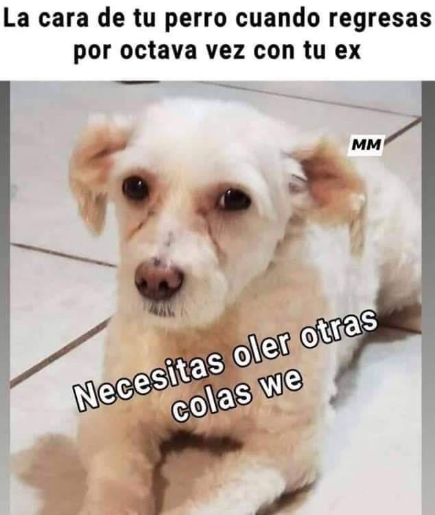 Marcianadas 401 11102019001342 (272)