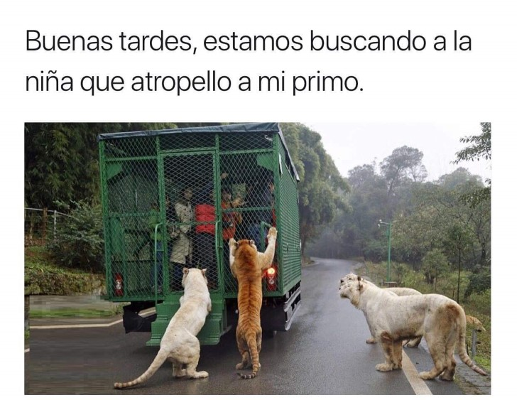 Marcianadas 402 18102019001507 (123)