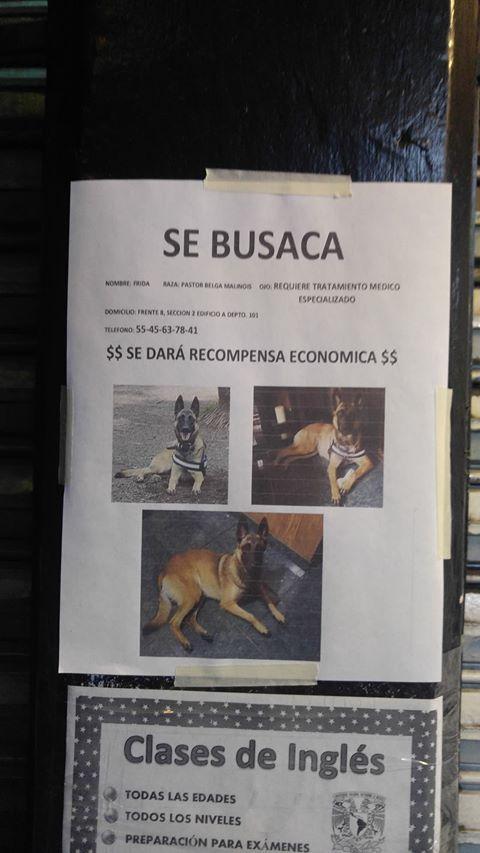 Marcianadas 402 18102019001507 (177)
