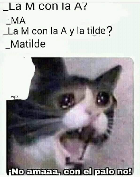 Marcianadas 402 18102019001507 (236)