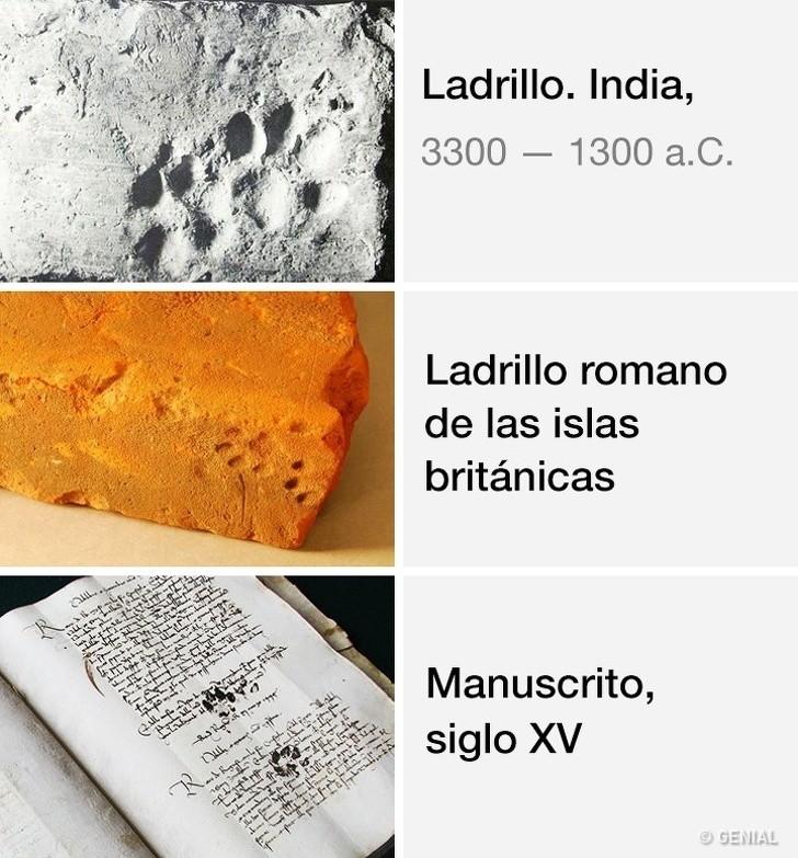 Marcianadas 403 25102019001151 (115)