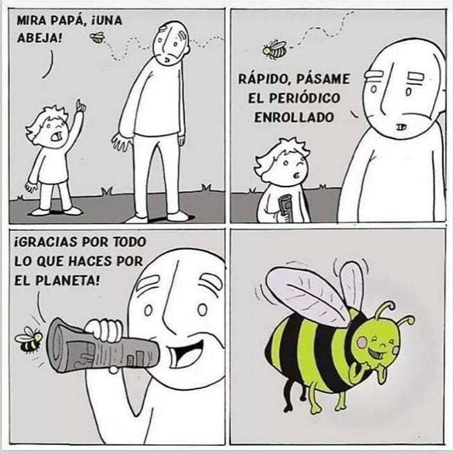 Marcianadas 403 25102019001151 (126)