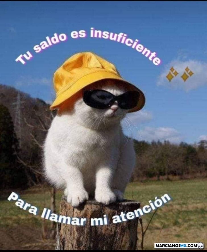 Marcianadas 403 25102019001151 (173)