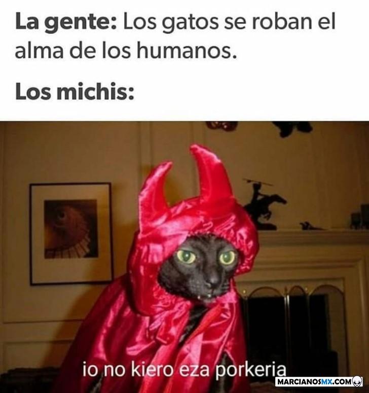Marcianadas 403 25102019001151 (292)