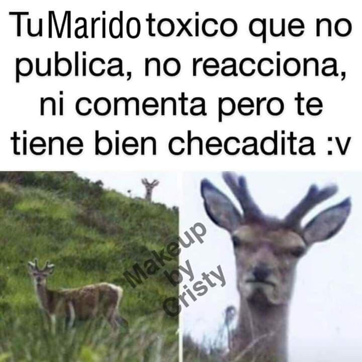 Marcianadas 403 25102019001151 (50)