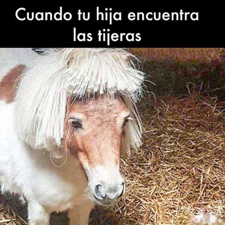 Marcianadas 404 011119001311 (106)