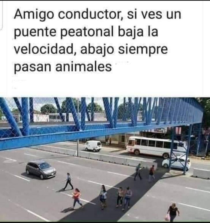 Marcianadas 404 011119001311 (15)