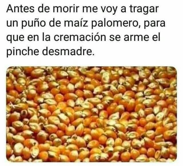 Marcianadas 404 011119001311 (3)