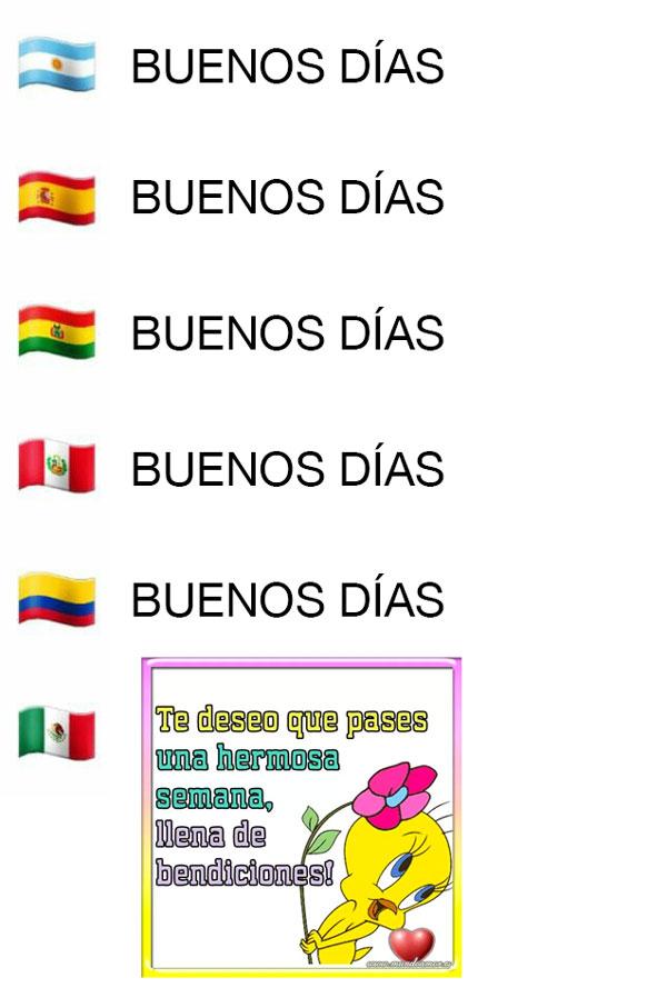Marcianadas 404 011119001311 (64)