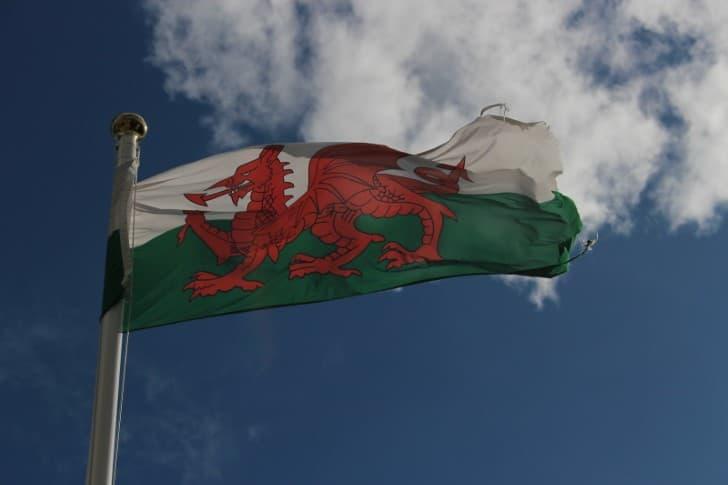 bandera de Gales dragon rojo