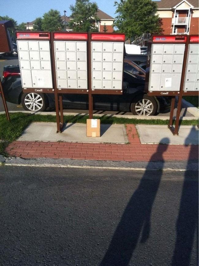 entregas de pesadilla en paqueteria (15)