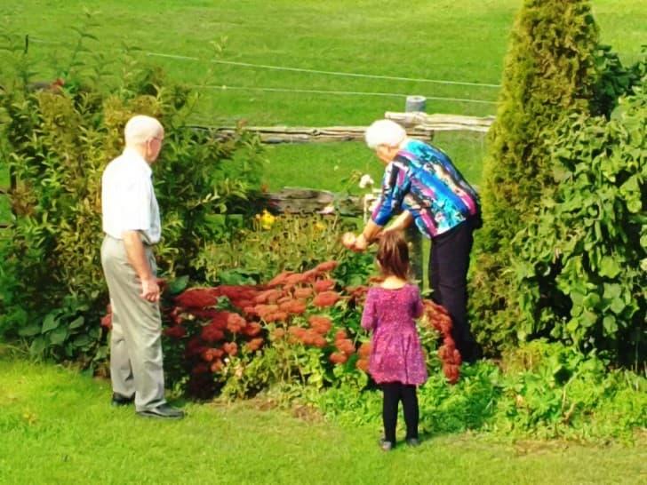 los abuelos con su nieta