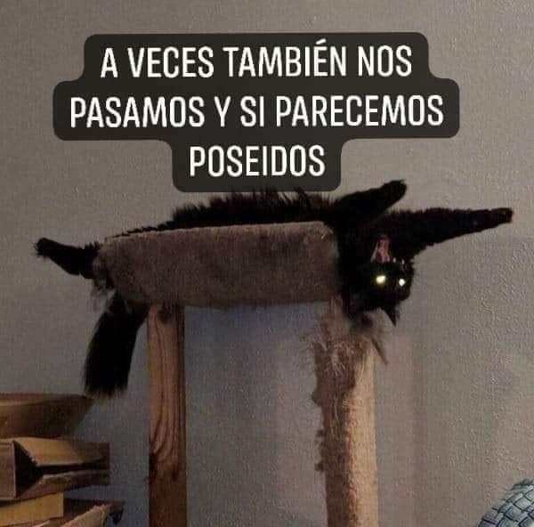 Marcianadas 404 c2 (4)