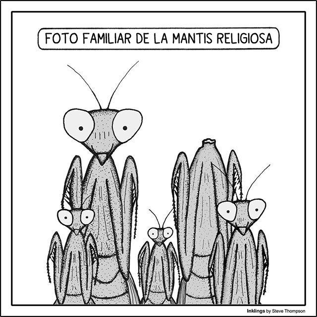 Marcianadas 405 08112019001119 (52)