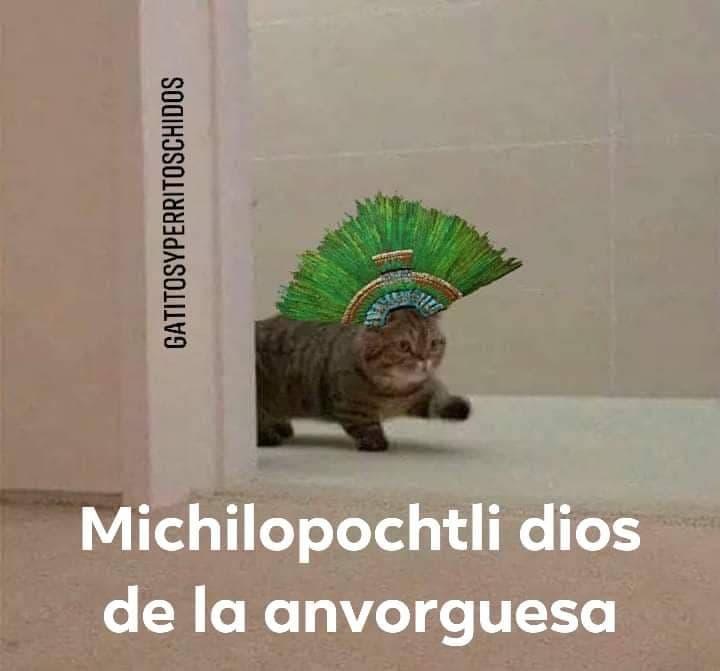 Marcianadas 406 15112019001452 (67)