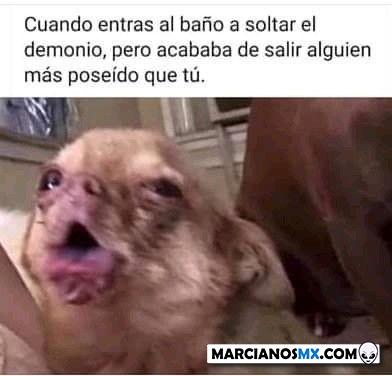 Marcianadas 407 22112019001341 (264)