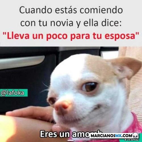 Marcianadas 407 22112019001341 (62)