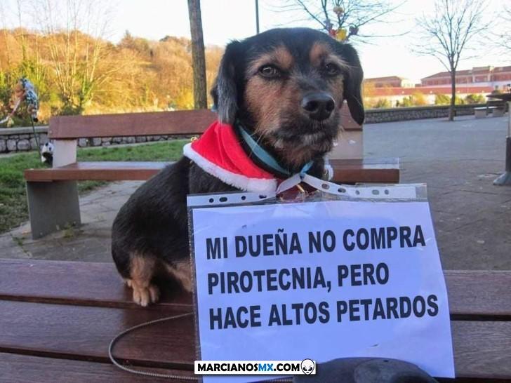 Marcianadas 408 29112019001452 (100)
