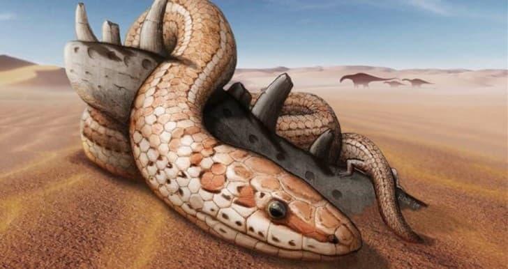 Najash snake ilustracion