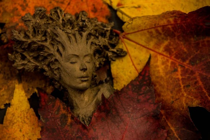 hojas y personas
