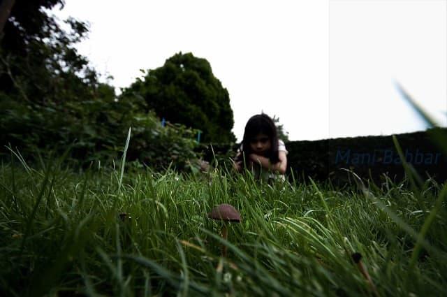 niño curioso en el patio